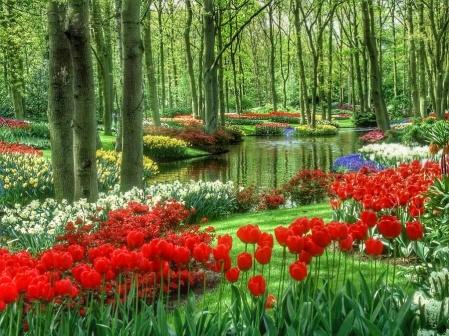 Netherlands-Giethorn
